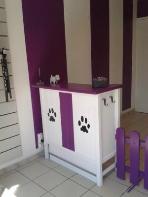Le salon de toilettage babines et coussinets en images for Salon de toilettage paris